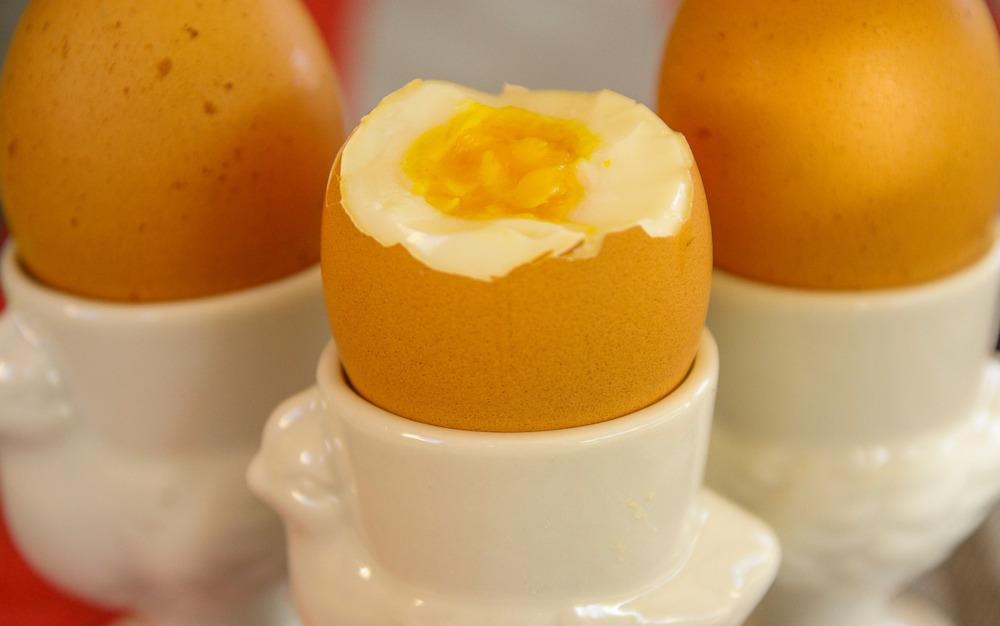 GIS ostrzega: Kupiłeś te jajka? Nie jedz ich – są skażone Salmonellą!