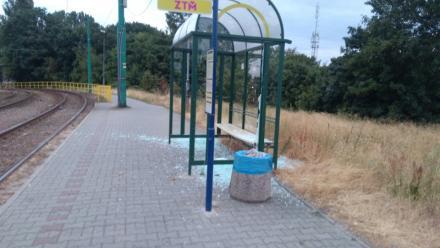 Zdewastowana wiata przystankowa i brawurowa akcja straży miejskiej w Świętochłowicach