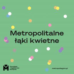 """Zgłoś się do programu """"Metropolitalne Łąki Kwietne"""""""