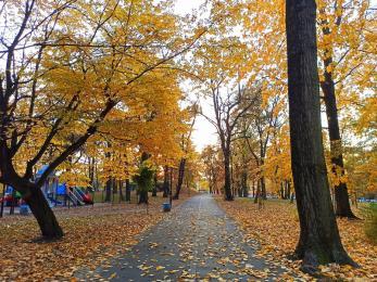Park Heiloo w Piaśnikach poleca się na spacer [Zdjęcia]